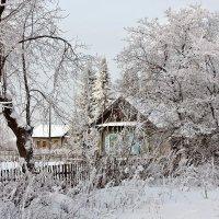 Зима в деревне :: Виктор Ковчин