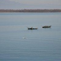 Рыбаки на озере :: Людмила