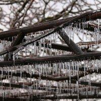 Ледяной дождь :: Диана С