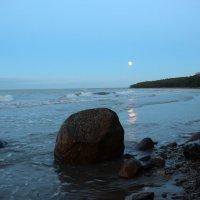 Лунный вечер :: Александр