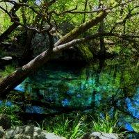 озерце с голубым дном :: Андрей Козлов