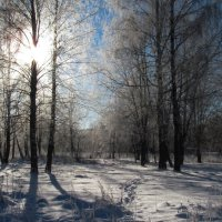 Зимний пейзаж :: Олег Козлов