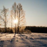 Зима :: Александр Семенов