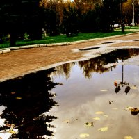 после дождя :: Евгения Копейкина