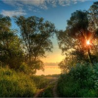 Дорожка к рыболовному месту. :: Nikita Volkov