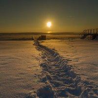 Снежная тропа :: Виталий Верхозин