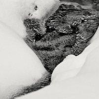 Белое на черном :: Сергей Рычков