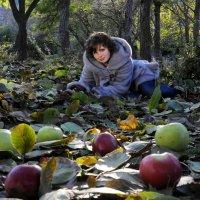 Осенние яблоки :: Игорь Юрьев