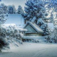 Морозко :: Ed Peterson