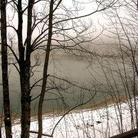 Утренний туман сквозь кружево ветвей :: Любовь Белянкина