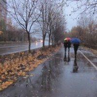 Дождь :: Галина