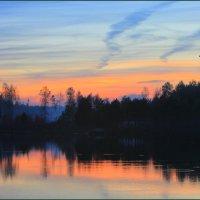 Вечер на лесном озере :: Nikita Volkov
