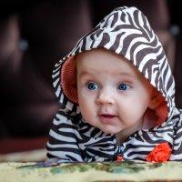 Малыш :: Александр Липатов