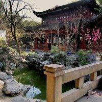 Парк Юйюань – сад Радости (Yuyuan Garden) :: Jozhеg Tumanov ( Serg F) Serg F