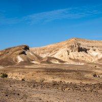 В пустыне Негев :: Владимир Горубин
