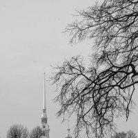 Петропавловская крепость :: Михаил Ананьев