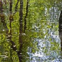 воды половодья на реке Сож в Гомеле :: Vladislav Rogalev