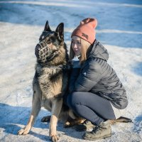 Моя собака :: Григорий Никитин