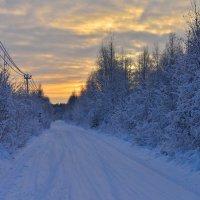 дорога зимняя :: Аркадий Алямовский