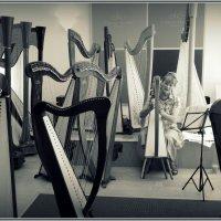 Музыкальный салон... :: Владимир Секерко
