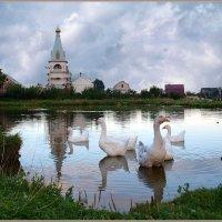 Тихий семейный вечер на пруду :: Ирина Данилова