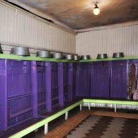 Непопулярное нынче мытьё :: Ирина Данилова