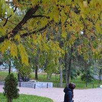 Осень же :: Дашенька Лабуткина