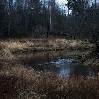 В начале января... :: Любовь Анищенко