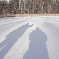 Снежные тени :: levonchik stepanyan