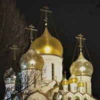 Зачатьевский монастырь :: sergej-smv