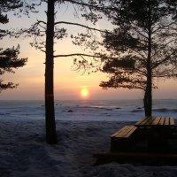 Закат на Финском заливе. :: Lana