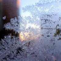 Кружева на моем окне - 5 :: Оксана Рубан