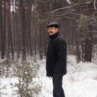 в лесу :: Василий Платонов