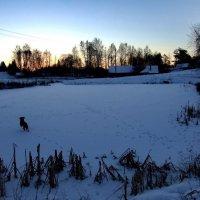 29 января, восход 2 :: Юрий Бондер