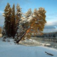 Зима пришла :: Марат Шарипов