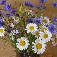 Полевые цветы. :: Lana