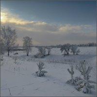 зима :: Valentin Valentin