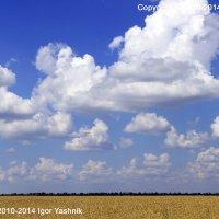 Украина. :: Игорь Яшник