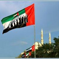Флаг семи Эмиратов :: Евгений Печенин
