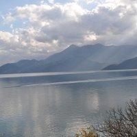 Скадарское озеро :: Людмила