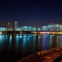 Финляндский железнодорожный мост :: Аркадий Алямовский