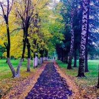 Осень в Чехове :: Илсур Загитов