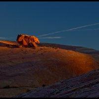 Собака, греющаяся в лучах заходящего солнца :: Максим Трухан