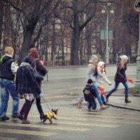 Пешеходность :: sv.kaschuk