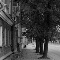улица :: юрий мотырев