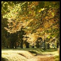 Пассыпалась осень по аллеям :: Елена Slychainaya