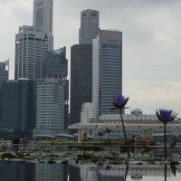 сингапур :: Виктор Жовтяк