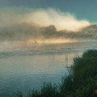 Утро на реке :: Evgenij Schleinikov