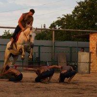 Казачьи забавы 3 :: Александр Неустроев
