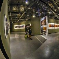Выставка конфликт глазами фото журналистов в Израиле-Тель Авив :: Shmual Hava Retro